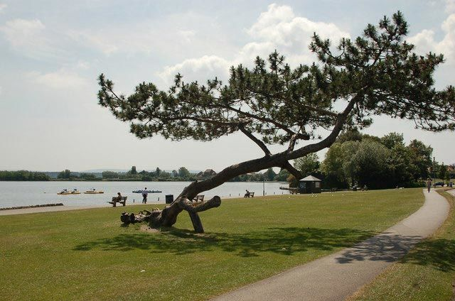 Poole Park is a great location for a free things to do in Poole.