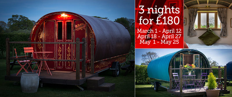Best bargain ever for Dorset glampers! 3 nights for £180