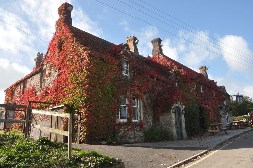 The Bankes Arms in Studland is one of the best countryside pubs in Dorset.