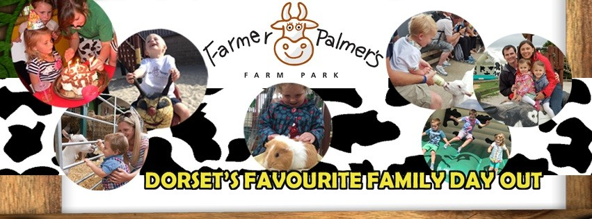 Farmer Palmer's Farm Park is one of the best family days out in Dorset.