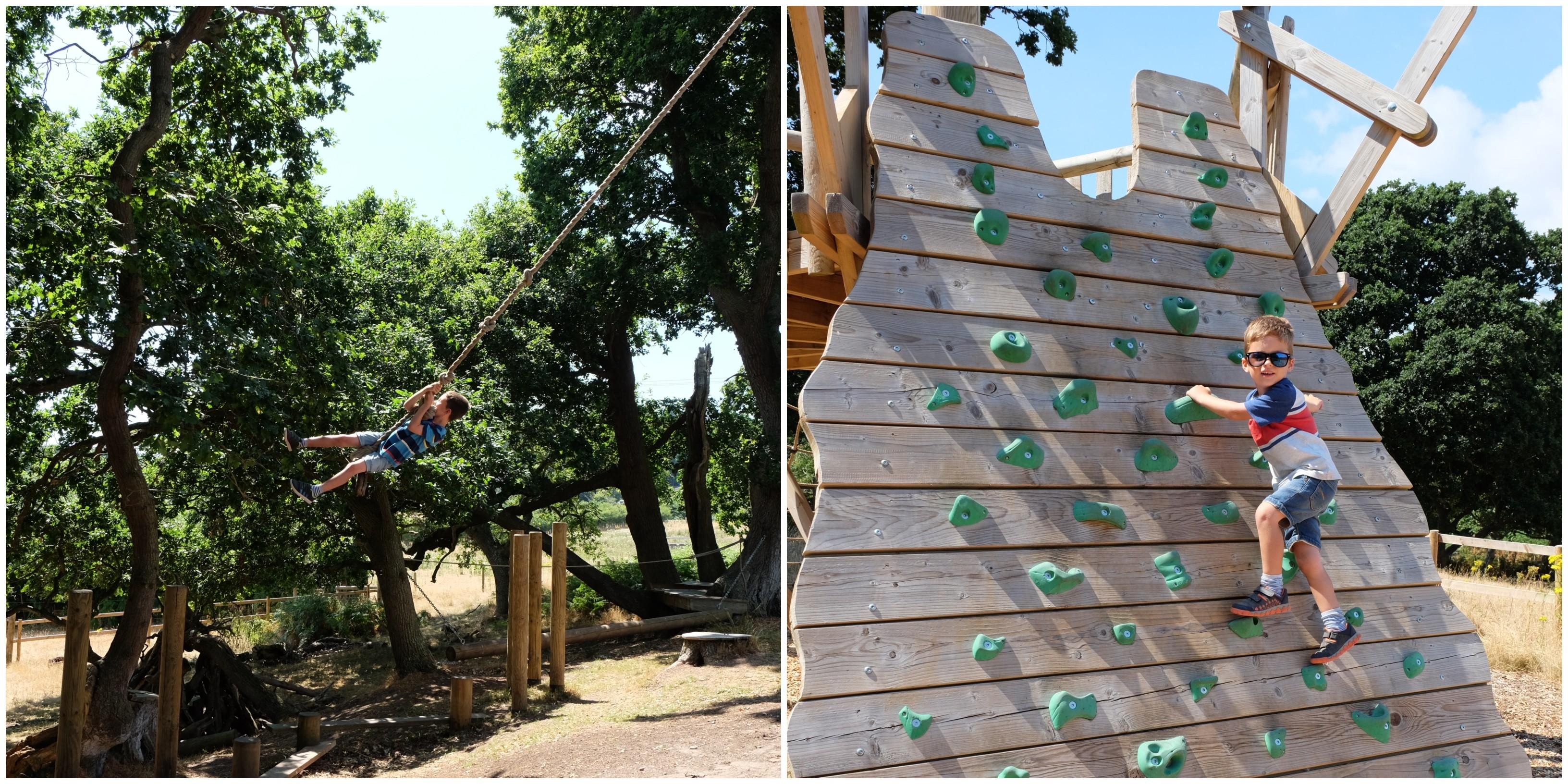 RSPB Arne Kids Play Park
