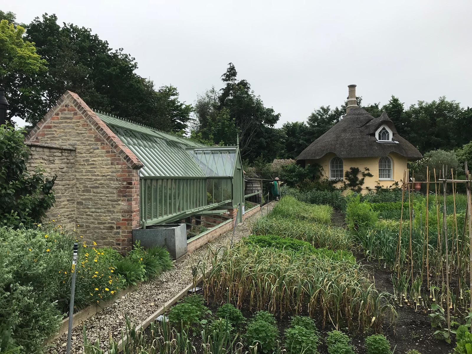 Kitchen garden.