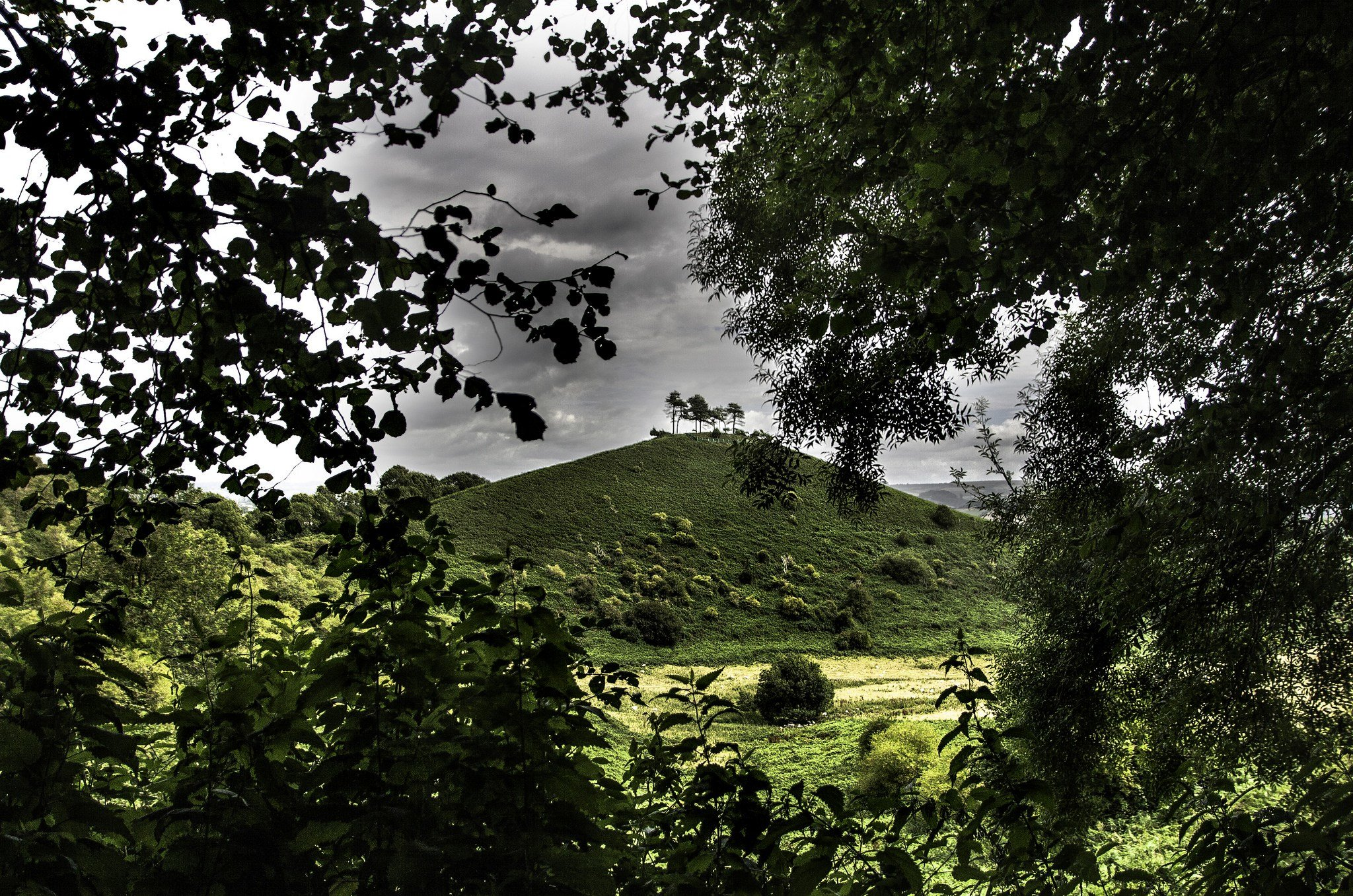 Colmers Hill on the outskirts of Bridport offers scenic views of Wes Dorset