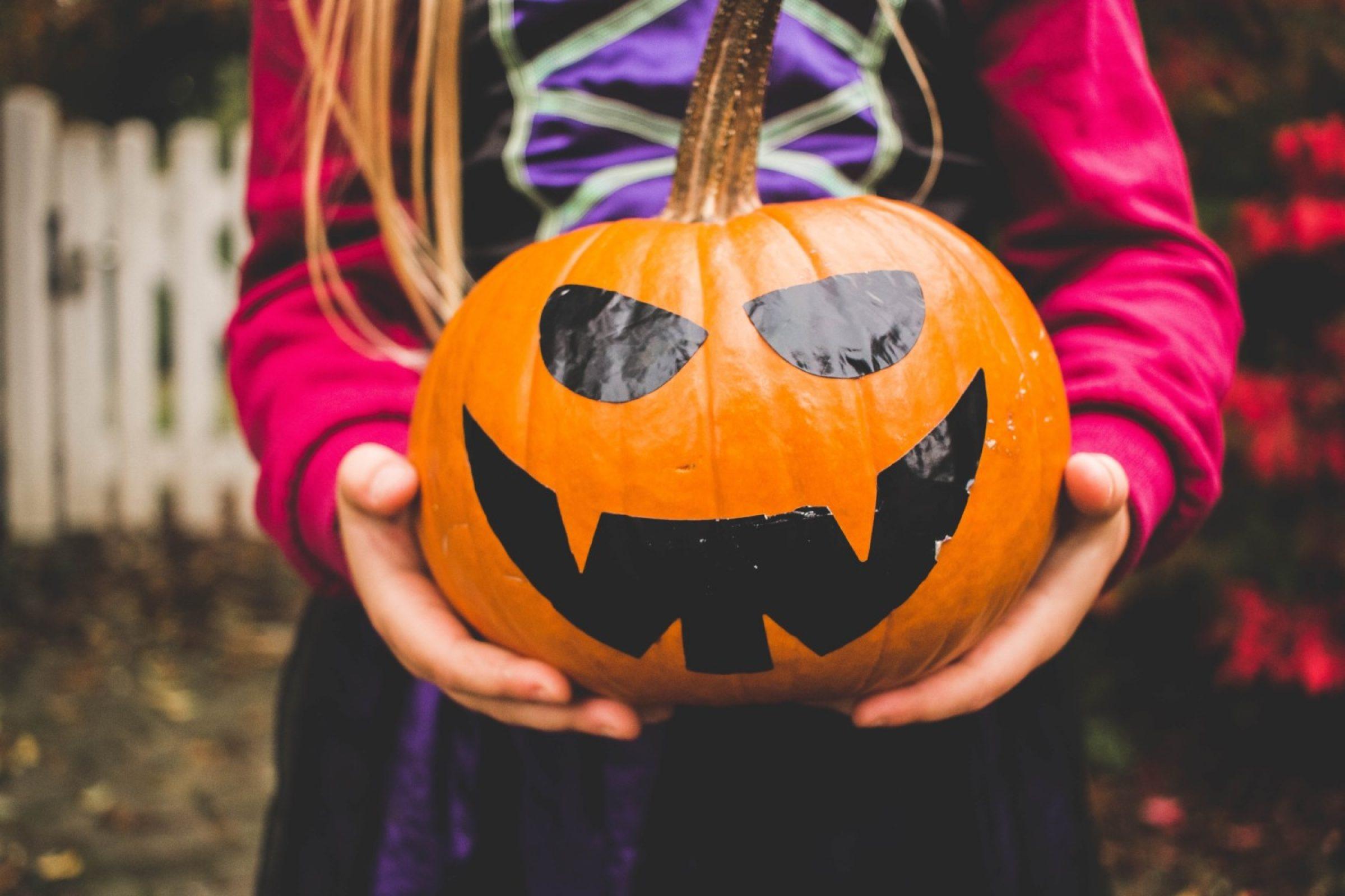 October Half Term and Halloween Events in Dorset