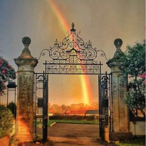 Instagram gate