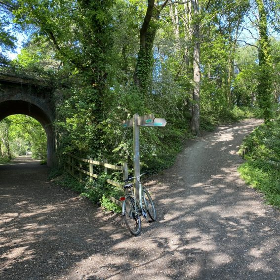 best cycle paths near poole