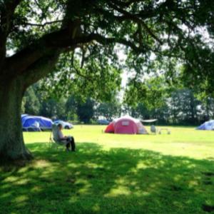 camping at south lytchett manor